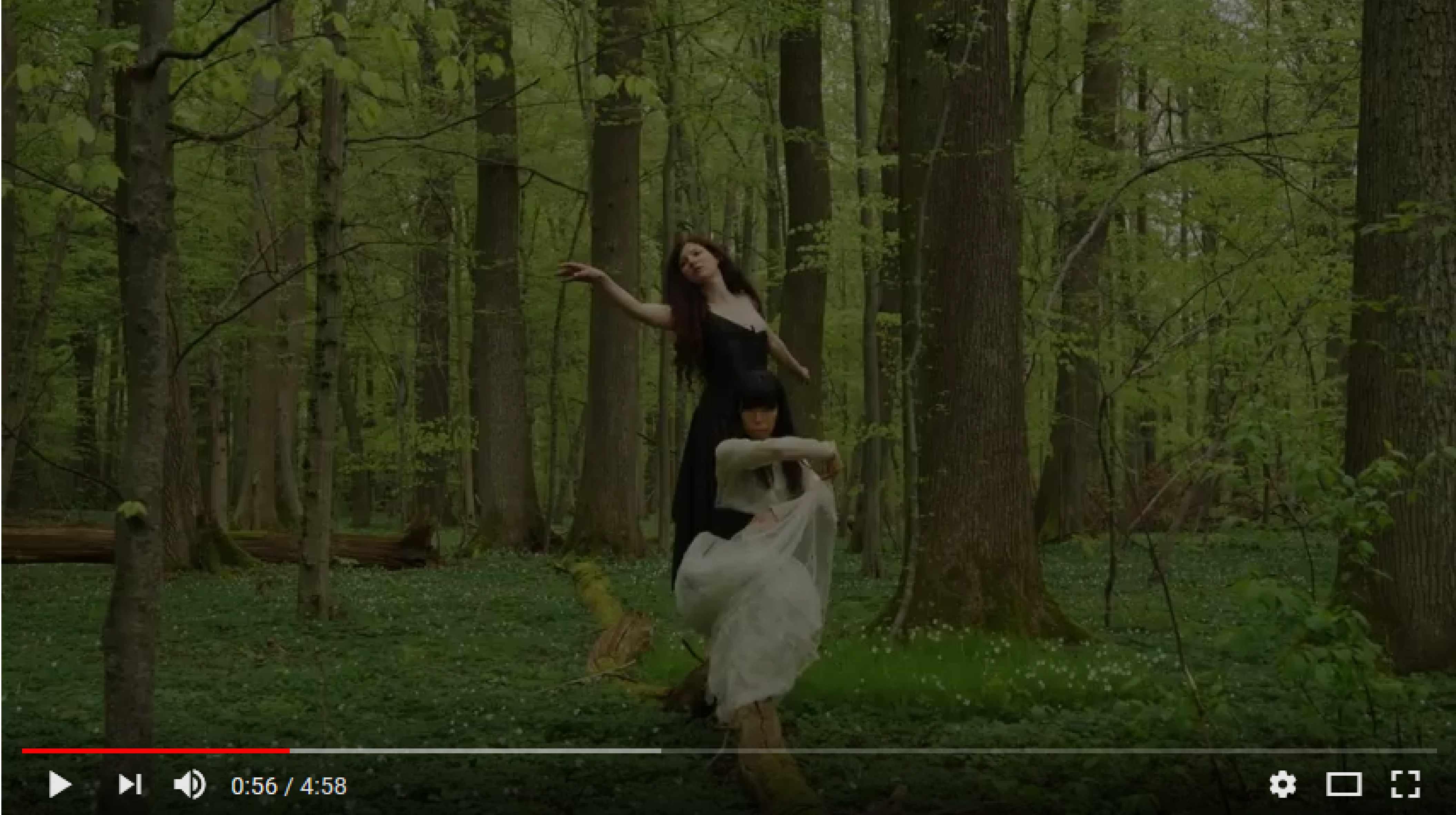 Vorschaubild Trailer Schumann